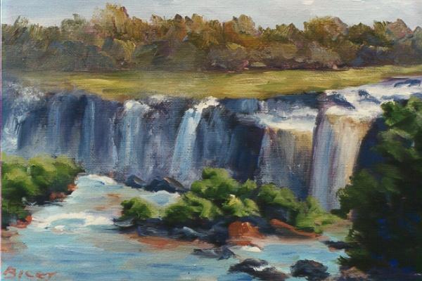 Iguazu Falls I