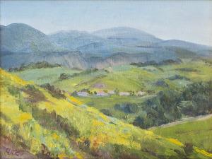View-of-Portola-Hills