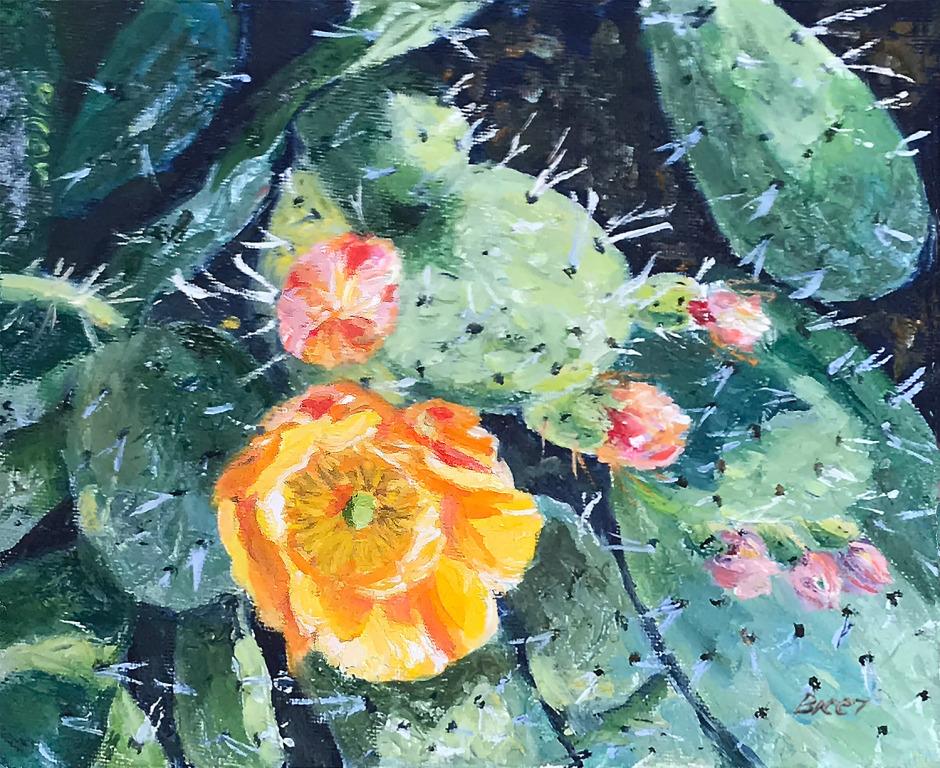 Cactus C